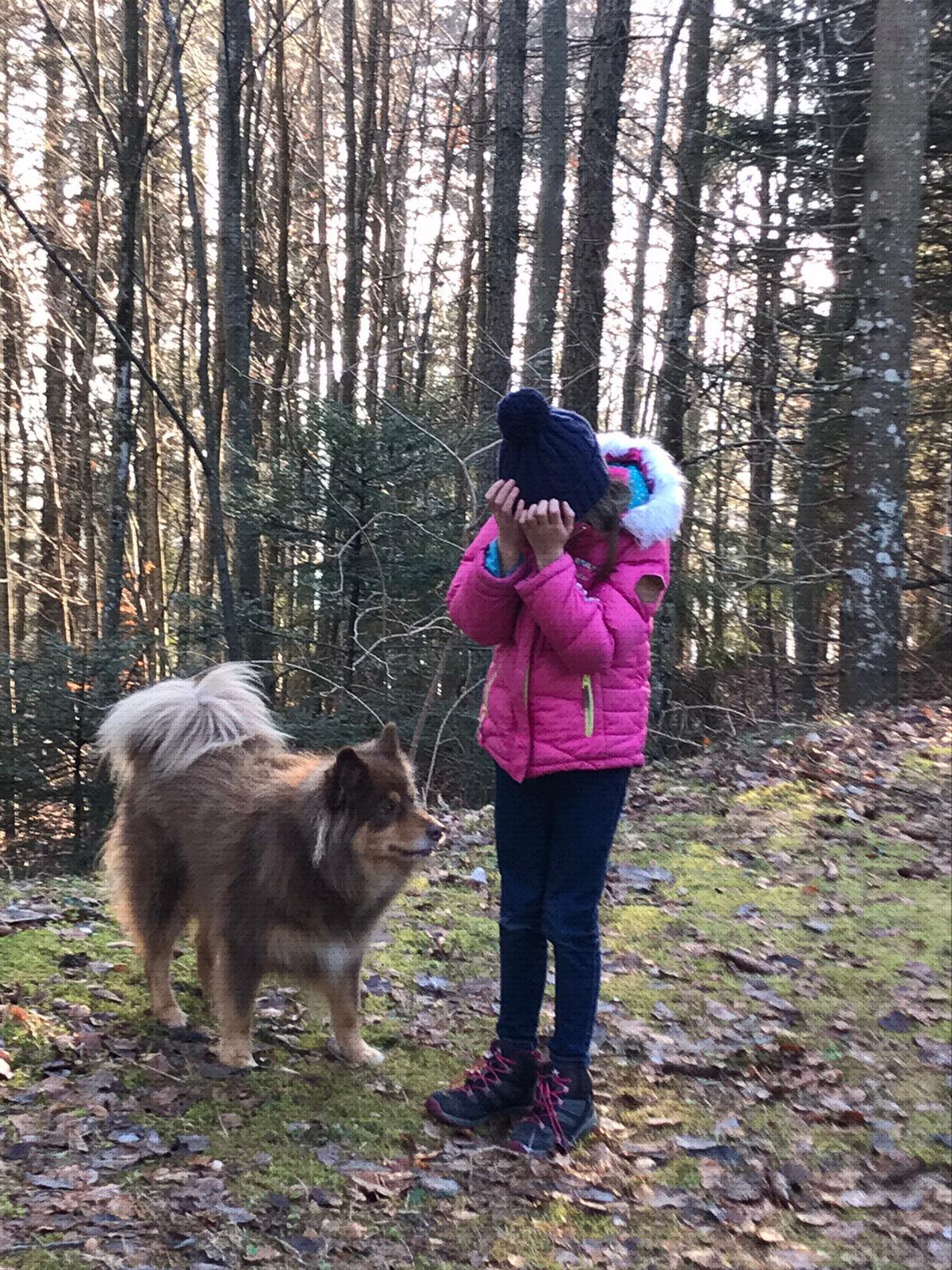 Angst voor Honden